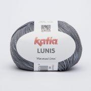 LUNIS 65